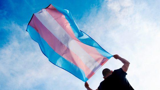 «N'occultons pas encore une fois les personnes trans!», un collectif d'associations signent une tribune dans Libération