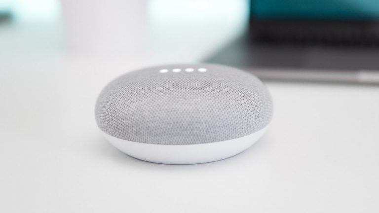 Google Home assistant vocal