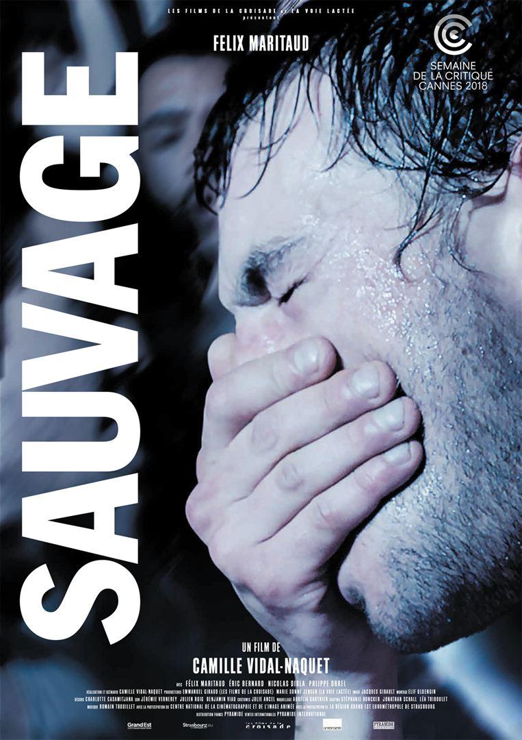 Affiche film sauvage