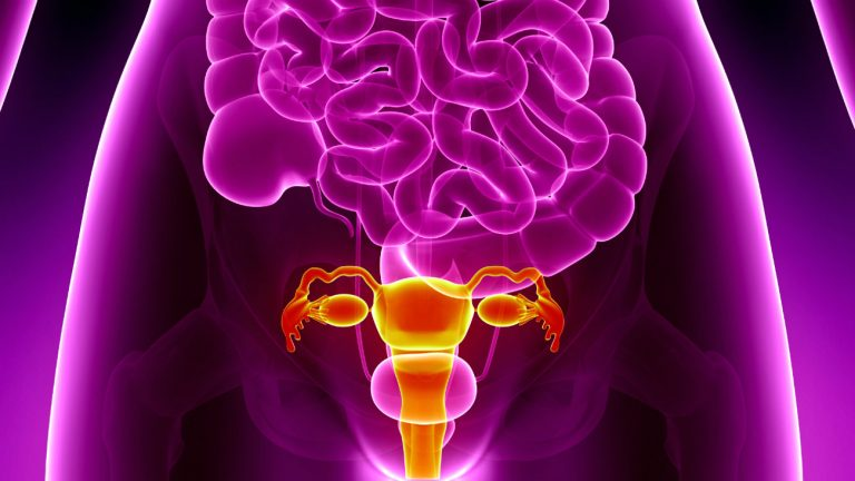 greffe uterus personnes intersexes pma gpa