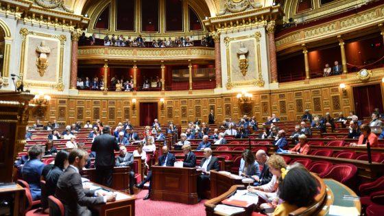 Loi bioéthique: au tour du Sénat de débattre de l'ouverture de la PMA