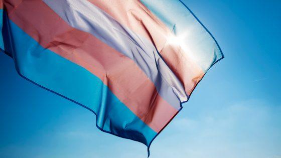 Des élus républicains tentent d'interdire les drapeaux trans et arc-en-ciel sur les bâtiments publics