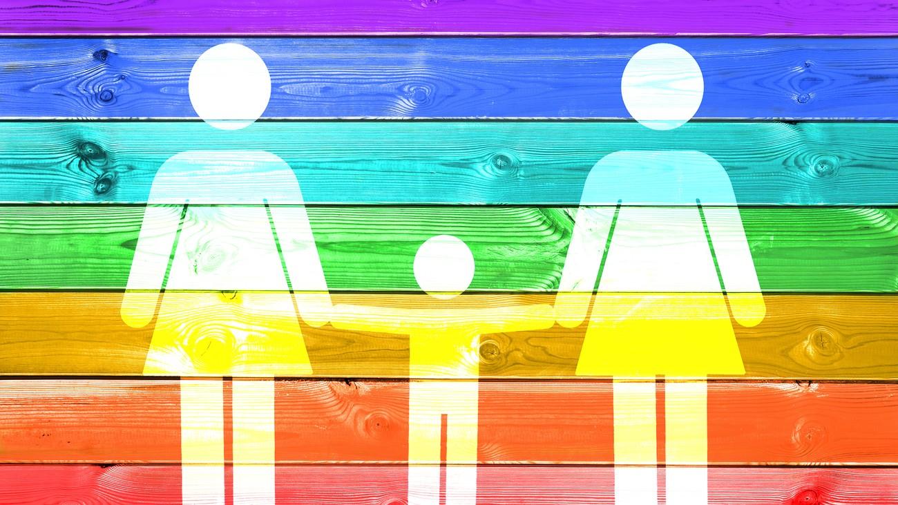 Les anti-PMA manifestent, les familles homoparentales se disent agacées et lasses