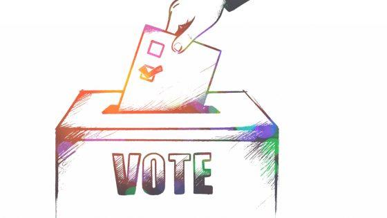 Vous ne pouvez pas manifester? Et bien votez!