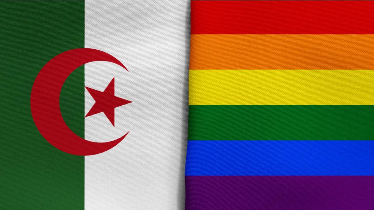 algérie lgbt