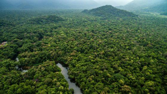 Coming out en Amazonie, où des hommes gays tikunas n'ont plus à se cacher