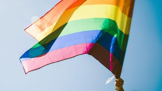 Strasbourg se proclame «zone de liberté LGBTI+»