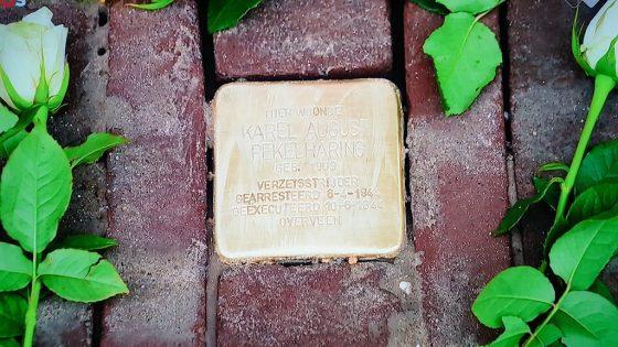 des plaques commémoratives dans une rue pour honorer les victimes gays du régime nazi